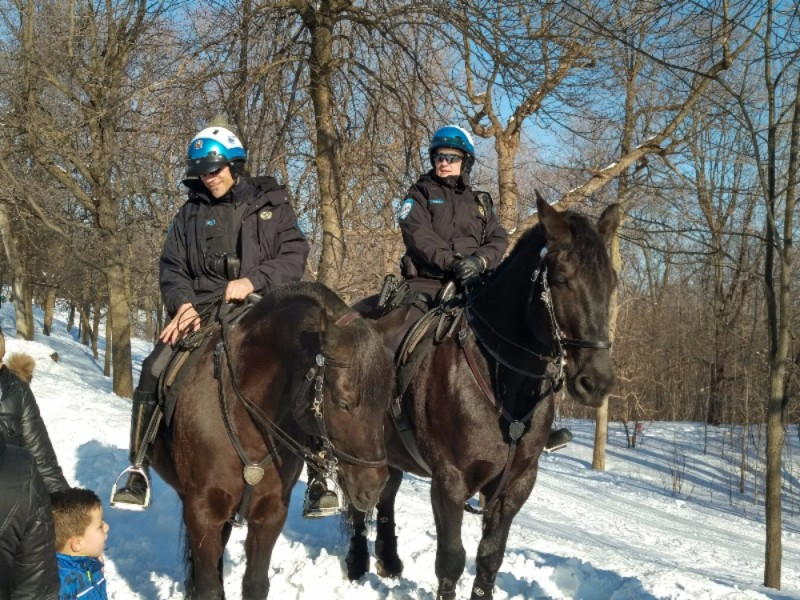 montreal mounted police